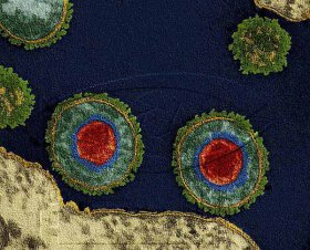 Science Art - J3 (16x Microbiology)