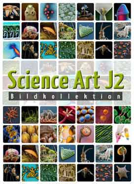 Science Art – J2 (14x Botanik)